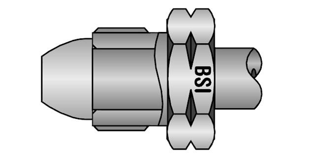 bsi-inl